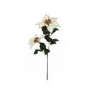 y02225-花材-聖誕花(米黃)