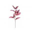y02304-花材-金典花材-洋玉蘭葉(紅)