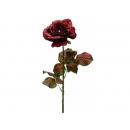y02314-花材-金典花材-玫瑰(紅)
