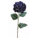 y02315-花材-金典花材-繡花球(紫)
