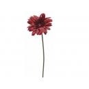 y02320-花材-金典花材-太陽花(紅)