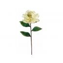 y02321-花材-金典花材-洋玉蘭(米白)