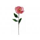 y02323-花材-金典花材-洋玉蘭(粉紅色)