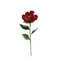 y02325-花材-金典花材-洋玉蘭(紅)
