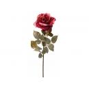 y02330-花材-金典花材-金邊玫瑰(美麗紅 )