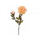 y02333-花材-金典花材-金邊牡丹(橘紅)