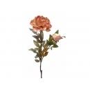 y02334-花材-金典花材-金邊牡丹(豆沙)