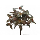 y02354-花材-其他-玉蘭葉束