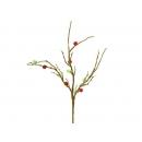 y02363-花材-其他-珊瑚+珠插飾(紅)