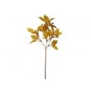 y02380-花材-其他-金葉果實