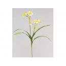y02388-花材-其他-花