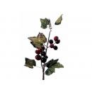 y02405-花材-其他-果實