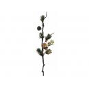 y02406-花材-其他-果實