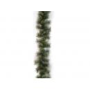 y02802-藤.圖-金蔥松針藤