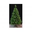 y02823-松針樹