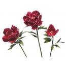 y02928-春節系列-花材-花束(紅)