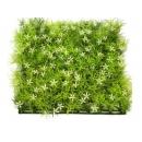 y03697-庭園造景-人工草皮-星花草皮