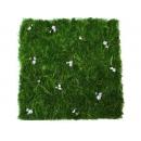 y03705-庭園造景-人工草皮-滿天星草皮(深)-已售完