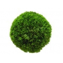 y03710-庭園造景-人工草皮-松針球