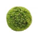 y03715-庭園造景-人工草皮-星花球