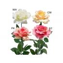 y03717-花材花藝果樹-花材-玫瑰(白、黃、粉、紅)