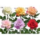 y03718-花材花藝果樹-花材-大玫(白、黃、黃粉、粉、紫、紅)