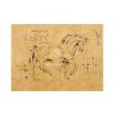 y09491 複製畫 Hartenhoff-Equus I-H902