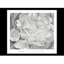 y09502 複製畫 O Keeffe-The White Calico Flower, 1931-O315絶版,可用手繪擬摹