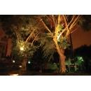 y10778-燈飾美學-LED戶外投射燈-路樹燈(白、黃光)