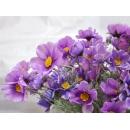 y11317 花藝設計.花材花藝果樹系列-波斯菊束-紫
