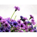 y11318 花藝設計.花材花藝果樹系列-精緻人造花-迷你花束-紫