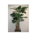 y11654 人造樹-5.5尺曼綠絨