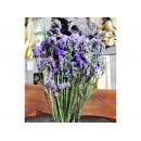 y11721 精緻人造花-天然乾燥花-永生星辰.紫