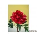 y11760 花藝設計-精緻人造花-日本牡丹長枝 紅/枝 (共3色)