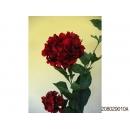 y11761 花藝設計-精緻人造花-自然繡球花 紅(共4色)