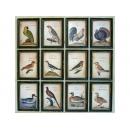 y11788 十二格拼接小鳥木板畫