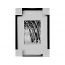 黑白攝影-樹貌 (y11790 攝影作品-w38xh54cm(含框尺寸),可指定尺寸)