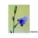 y11800 花藝設計-精緻人造花-德國愛麗 紫/枝(共2色)