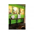 y11976 傢俱系列-印度傢俱-玄關雙抽圓柱長桌
