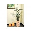 y12106 花器系列-美人蕉+高圓筒花器/組